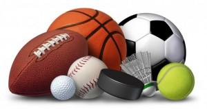 in-sports1
